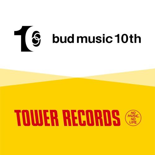 towereco-bud