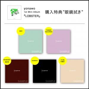 yonawo_glass_cloth_all